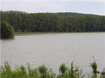 teren de vanzare,zona schitu duca,la strada principala